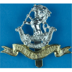Queen's Regiment 1966-1992 Anodised Staybrite army cap badge