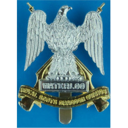 Royal Scots Dragoon Guards   Anodised Staybrite army cap badge