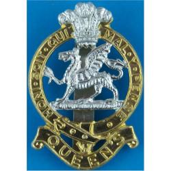 Queen's Regiment 1966-1992  Anodised Staybrite army cap badge