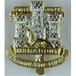 Ulster Defence Regiment Gold Colour with Queen Elizabeth's Crown. Anodised Staybrite army cap badge