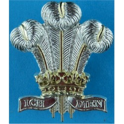 Royal Regiment of Wales   Anodised Staybrite army cap badge