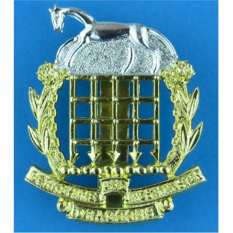 Berkshire & Westminster Dragoons 1961-1984  Anodised Staybrite army cap badge