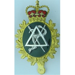 Canadian Armed Forces Dental Branch  with Queen Elizabeth's Crown. Gilt and enamel Officers' metal cap badge