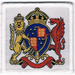 Elizabeth College: Guernsey On White Square  Woven Other Ranks' cap badge