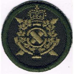 Lincolnshire Regiment   Bi-metallic Other Ranks' metal cap badge