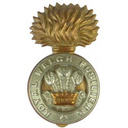 Devonshire Regiment  with King's Crown. Bi-metallic Other Ranks' metal cap badge