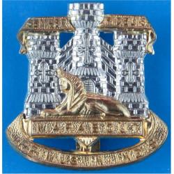 Devonshire & Dorset Regiment   Bi-metallic Other Ranks' metal cap badge