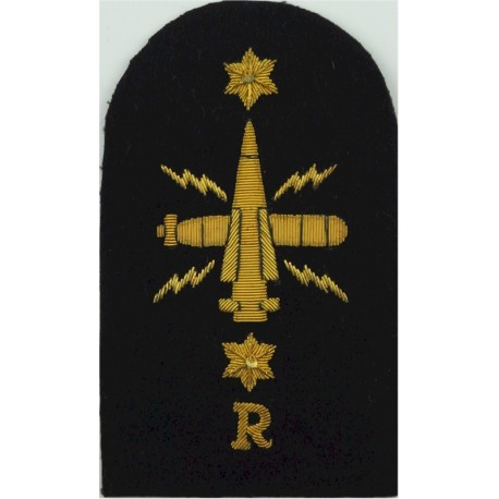 Royal Navy - Words - Chest Title Brown On Sand  Embroidered Naval Branch, rank or miscellaneous insignia