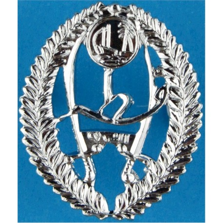 Western Australia Prisons Department Arm Badge - Shield with Queen Elizabeth's Crown. Embroidered Overseas Police, Prison or Cor