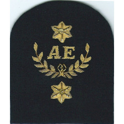 Royal Marines AE In Wreath+2 Stars: Assault Engineer Trade: Gold On Navy  Bullion wire-embroidered Marines or Commando insignia