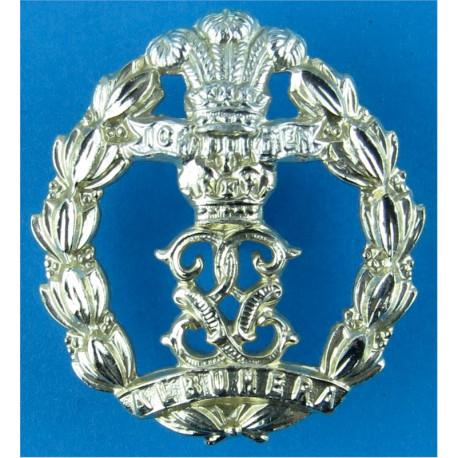 Royal New Zealand Signals FR Anodised Staybrite collar badge