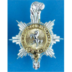 Royal Army Medical Corps FR with Queen Elizabeth's Crown. Anodised Staybrite collar badge