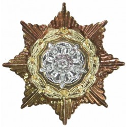 Prince Of Wales's Own Regiment Of Yorkshire   Anodised Staybrite collar badge