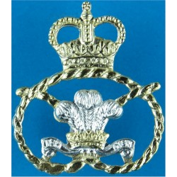 Staffordshire Regiment (The Prince Of Wales's) 2nd Type - Gold Rope with Queen Elizabeth's Crown. Anodised Staybrite collar badg