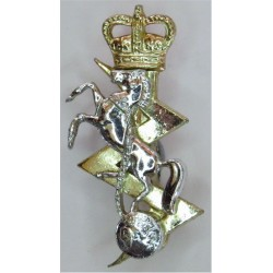 Argyll & Sutherland Highlanders (Princess Louise's) FR Anodised Staybrite collar badge