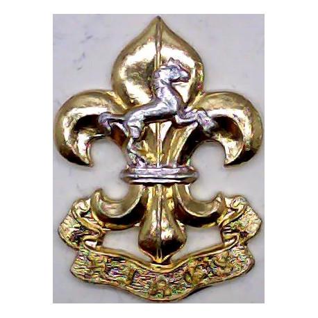 Royal Artillery   Anodised Staybrite collar badge