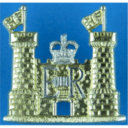 Suffolk & Norfolk Yeomanry  with Queen Elizabeth's Crown. Anodised Staybrite collar badge