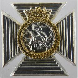 Duke of Edinburgh's Royal Regiment FR  Anodised Staybrite collar badge