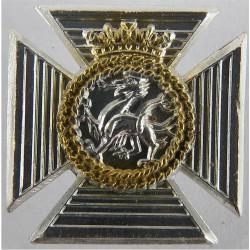 Duke of Edinburgh's Royal Regiment FL  Anodised Staybrite collar badge
