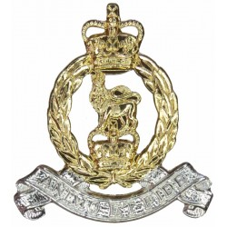 Adjutant General's Corps FL with Queen Elizabeth's Crown. Anodised Staybrite collar badge