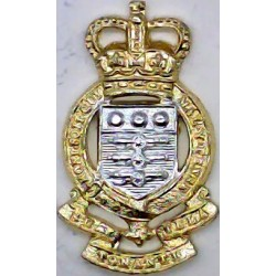 47th (Middlesex Yeomanry) Signal Regiment Queen's Crown. Anodised Staybrite collar badge