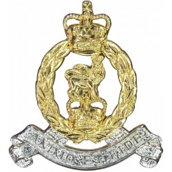 Adjutant General's Corps FR with Queen Elizabeth's Crown. Anodised Staybrite collar badge