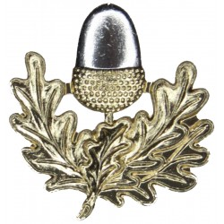 Cheshire Regiment   Anodised Staybrite collar badge