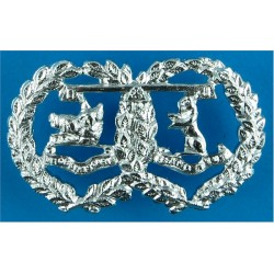 Queen Alexandra's Royal Army Nursing Corps Rare As A/A with Queen Elizabeth's Crown. Anodised Staybrite collar badge
