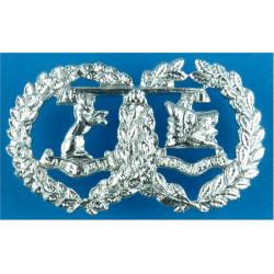 Argyll & Sutherland Highlanders (Princess Louise's) FR  Anodised Staybrite collar badge