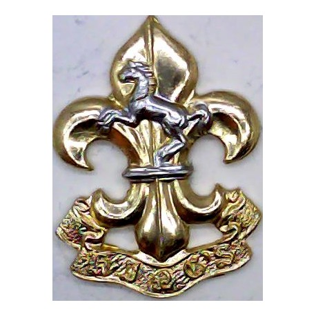 King's Regiment (Manchester & Liverpool) FL - 1970-1999  Anodised Staybrite collar badge