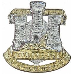 Devonshire & Dorset Regiment FR  Anodised Staybrite collar badge