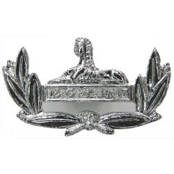 Gloucestershire Regiment FL - 1957-1994  Anodised Staybrite collar badge