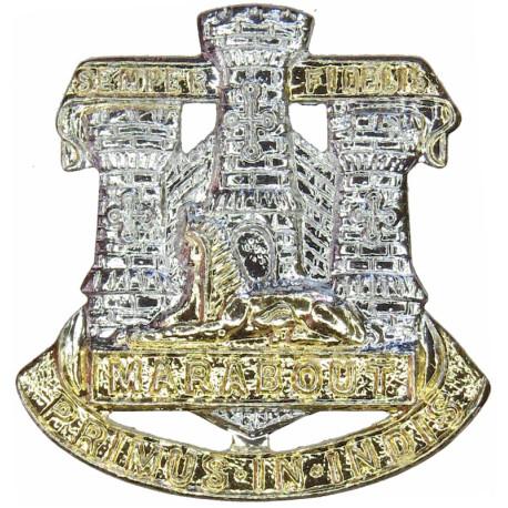 Devonshire & Dorset Regiment FL  Anodised Staybrite collar badge