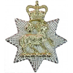 Queen's Royal Surrey Regiment (Lamb On Star) FR - 1959-1966 with Queen Elizabeth's Crown. Anodised Staybrite collar badge