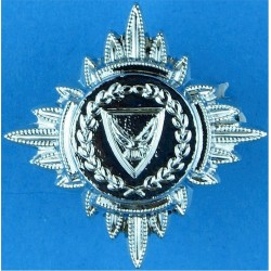 USA: Indiana Department Of Correction Arm Badge  Embroidered Overseas Police, Prison or Corrections insignia