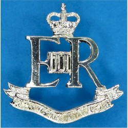 Military Provost Staff Corps (30 Man Unit) - Rare  with Queen Elizabeth's Crown. Anodised Staybrite collar badge