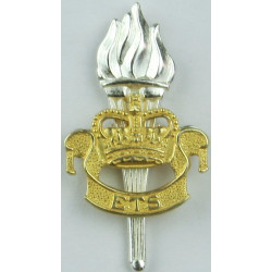 Adjutant General's Corps (Education & Training Serv)  with Queen Elizabeth's Crown. Silver-plate and gilt Officers' collar badge