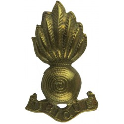 Princess Of Wales's Royal Regiment FR - Post-1993 Bronze Other Ranks' collar badge
