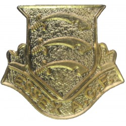 Essex Army Cadet Force Band   Gilt Other Ranks' collar badge