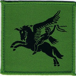 German Parachute Combat Swimmer Class 1 Yellow On Green Embroidered Parachute jump wings or badge