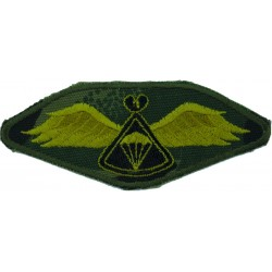 Lesotho Parachute Wings On Camouflage Background Black Behind 'Chute  Embroidered Parachute jump wings or badge