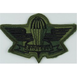 German Army Parachute Wings - Class 1 Gold/Grey On Grey Embroidered Parachute jump wings or badge