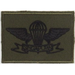 German Parachute Wings - Class 2 - 1985 Test Type On Olive (Grey Wings Embroidered Parachute jump wings or badge