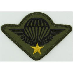 Iran Master Jumpmaster Wings (without Crown) 3 Stars In Wreath Chrome and enamelled Parachute jump wings or badge