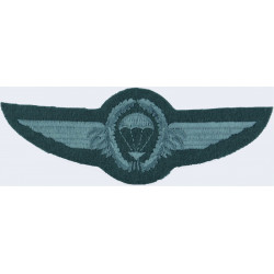 Iran Freefall Instructor Wings   Embroidered Parachute jump wings or badge