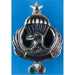 Iran Freefall Instructor Wings   Chrome and enamelled Parachute jump wings or badge