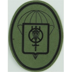 Spain - BRIPAC - Parachute Logistics Group Subdued Black/ Olive  Rubberised Airborne or Special Forces insignia