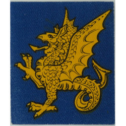 South West District (Yellow Wyvern On Mid-Blue) FL - 3rd Pattern  Printed Military Formation arm badge
