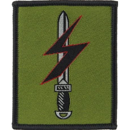 14th Armored Cavalry Regiment Colour Embroidered US Army shoulder sleeve insignia - SSI