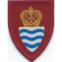 National Reserve West Lancashire Crown In Oval with King's Crown. Enamel Lapel or sweet-heart badge